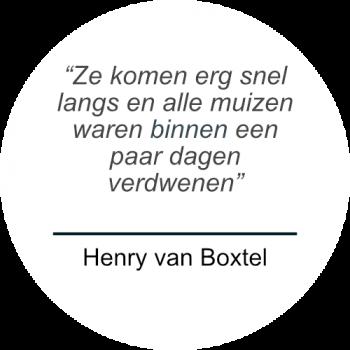 Henry van Boxtel over Prospekt